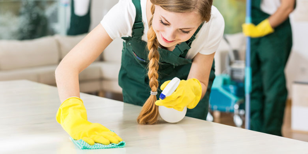 Dominican Realestate Services Cleaning