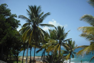 Oceanfront House in Sosua for sale