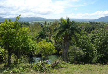 Property with Ocean View Sosua-Cangrejo