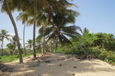 One of the few ocean front lots left in town - Kite Beach Cabarete