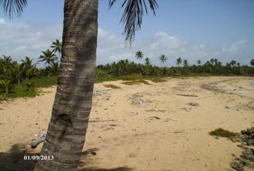 Large Beachfront Development Property in Uvero Alto
