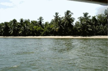 Magnificent beach front land near Samana