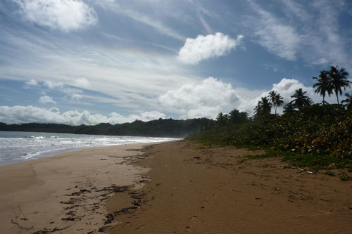 #1 Stunning beachfront land with wide frontage in Samana