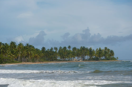 #6 Stunning beachfront land with wide frontage in Samana
