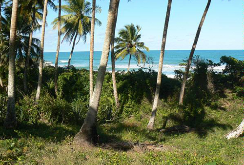 #3 Beach front lot for sale near Cabarete