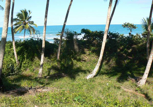 #2 Beach front lot for sale near Cabarete