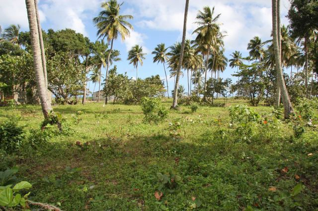 #0 Beachfront Lot in Cabarete with 150 meters beachfront