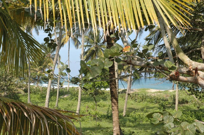 #1 Beachfront Lot in Cabarete with 150 meters beachfront