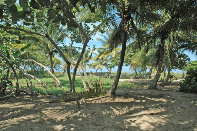 #3 Beachfront Lot in Cabarete with 150 meters beachfront