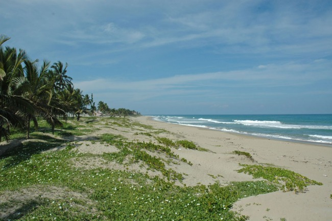 #4 Beachfront Lot in Cabarete with 150 meters beachfront
