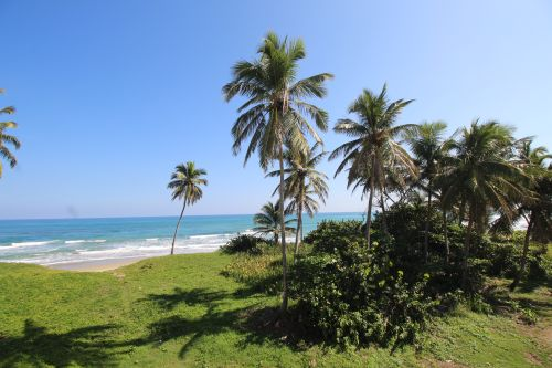 #9 Excellent commercial property in the heart of Cabarete