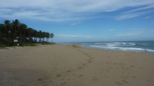 #6 Property with 160 Linear Meters of Beachfront near Cabarete