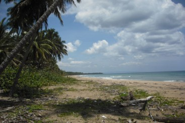 Spectacular Parcel of Beachfront Land in Nagua