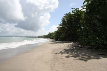 Development Land with 440 Meters Beachfront Rio San Juan
