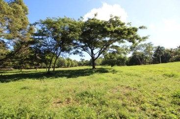 Excellent lot in popular gated community