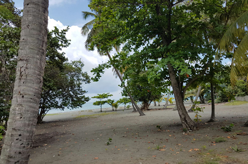 #3 Beachfront land in a quiet area of high quality properties - Bani