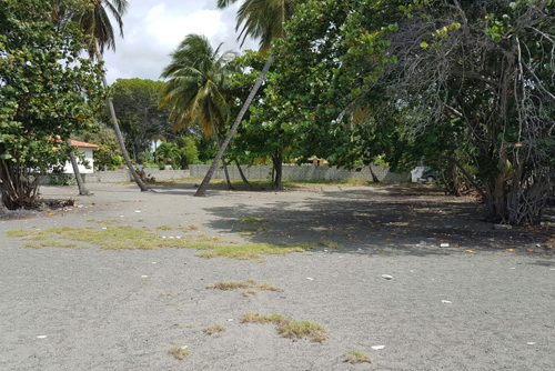 #6 Beachfront land in a quiet area of high quality properties - Bani