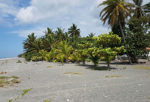 #0 Beachfront land in a quiet area of high quality properties - Bani
