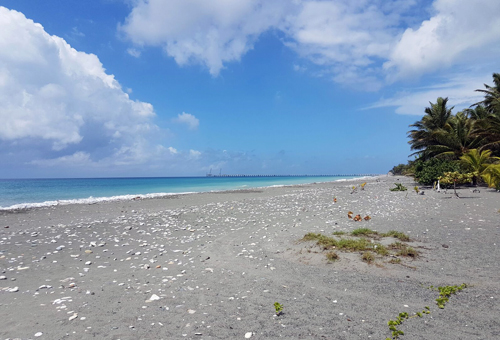 #1 Beachfront land in a quiet area of high quality properties - Bani