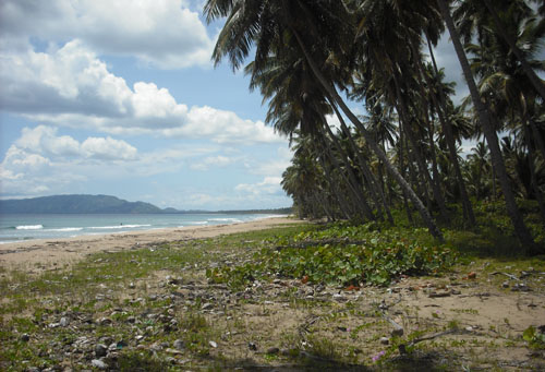 #1 Spectacular Parcel of Beachfront Land in Nagua