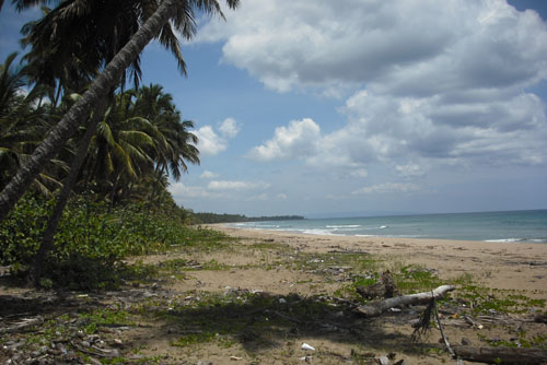 #0 Spectacular Parcel of Beachfront Land in Nagua