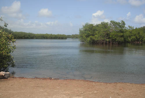 #3 Spectacular Parcel of Beachfront Land in Nagua