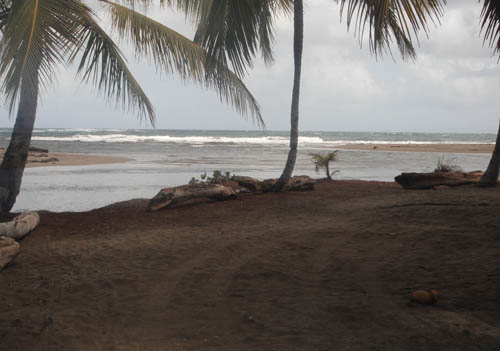 #2 Spectacular Parcel of Beachfront Land in Nagua