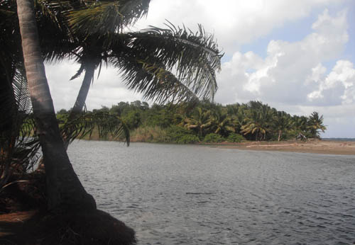 #5 Spectacular Parcel of Beachfront Land in Nagua