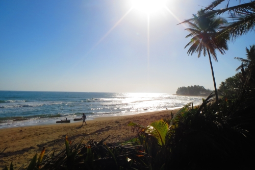 #7 Beachfront property with 3 x 2-Story Houses in Cabarete