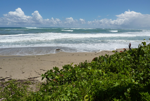 #3 Beachfront property with 3 x 2-Story Houses in Cabarete