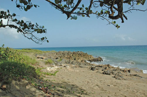 #3 Amazing ocean front lots in highly prestigious project