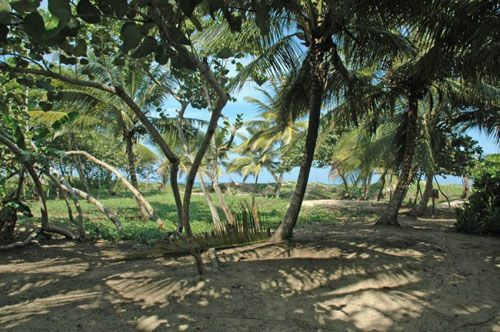 #0 Beachfront property with approx. 30 meters front in Cabarete