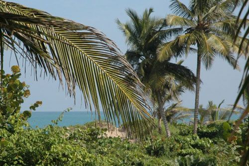 #4 Beachfront property with approx. 30 meters front in Cabarete