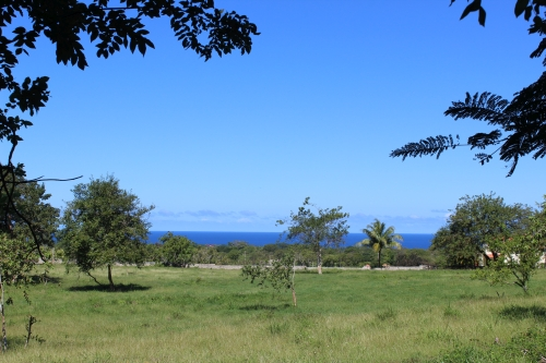 #5 Magnificent oceanview land in a prestigious gated project