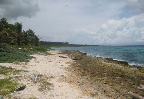 #0 Magnificent beach front land near Punta Cana