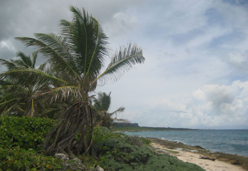 #5 Magnificent beach front land near Punta Cana