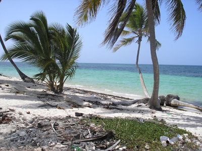 #1 Magnificent beach front land near Punta Cana