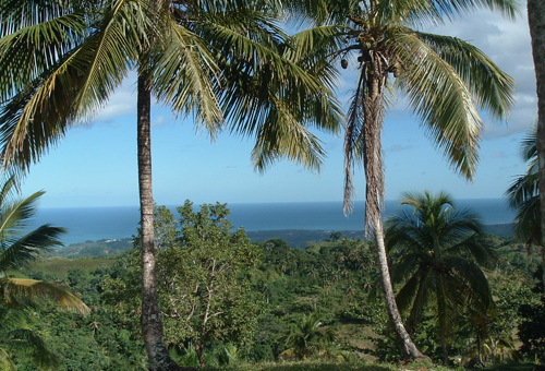 #3 Building Lots with spectacular ocean view Las Terrenas