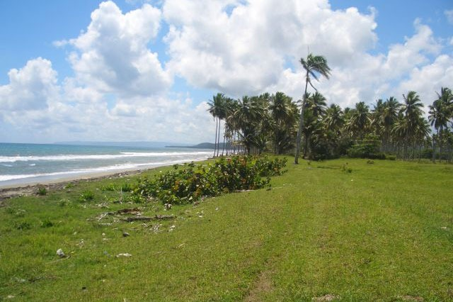 #3 Beachfront Property near Cabarete
