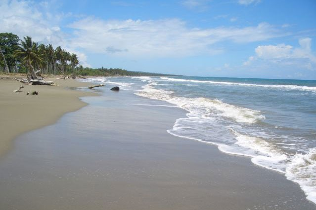 #5 Beachfront Property near Cabarete