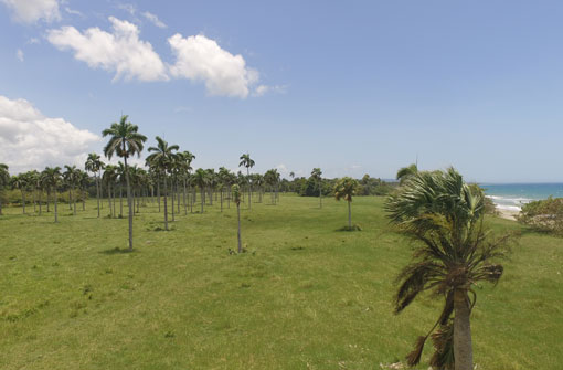 #9 Beachfront Property near Cabarete