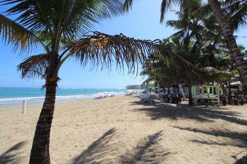 #6 Excellent income producer beachfront business in Cabarete center