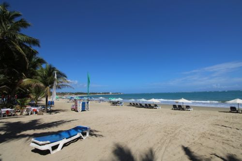 #8 Excellent income producer beachfront business in Cabarete center