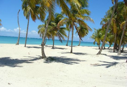 #2 One of the best beachfront parcels in Juanillo Beach - Punta Cana