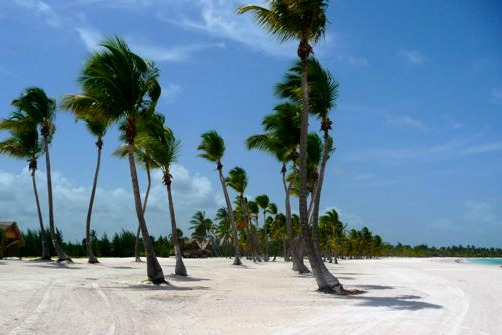 #5 One of the best beachfront parcels in Juanillo Beach - Punta Cana