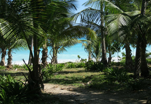 #3 Unique beach property with river access in Barahona