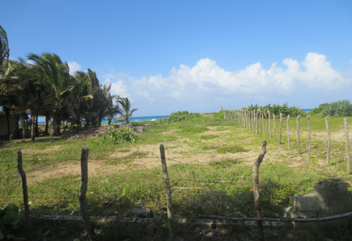 #3 Beautiful and well-proportioned beachfront lot at the kite beach Cabarete