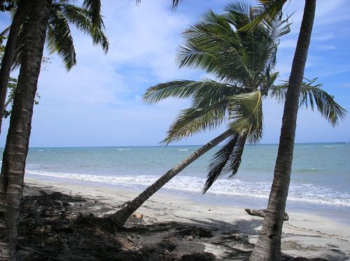 #4 Beachfront property with over 1,000 meters water frontage
