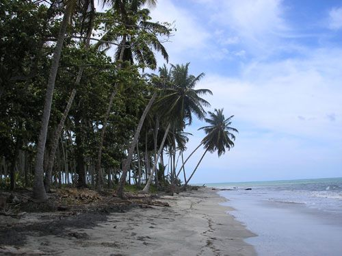 #3 Beachfront property with over 1,000 meters water frontage