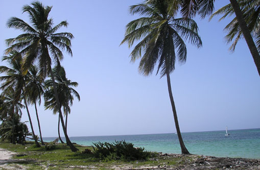 #2 Beautiful ocean front land near Bayahibe